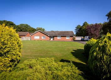 Thumbnail 4 bed detached bungalow for sale in Burgh Road, Bradwell