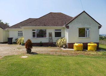 Thumbnail 2 bedroom detached bungalow to rent in Hawkchurch, Axminster