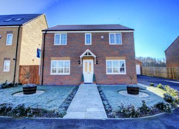 Thumbnail 4 bed detached house for sale in Buckthorn Grove, Middlesbrough