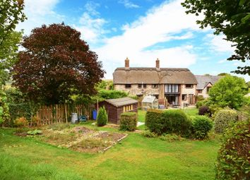Thumbnail 4 bed property for sale in Chaldon Herring, Dorchester