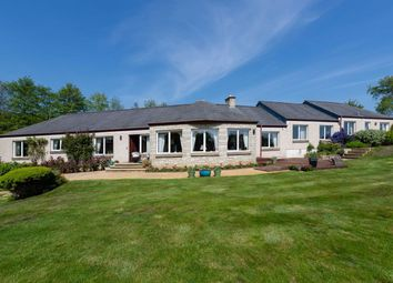 Thumbnail 4 bed detached house for sale in Charleton Estate, Colinsburgh, Fife