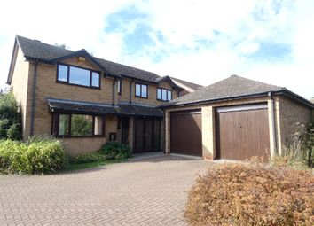 Thumbnail 5 bed detached house to rent in Payne Road, Wootton, Bedford