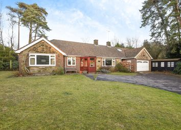 Thumbnail 4 bed detached bungalow for sale in Bracken Lane, Storrington