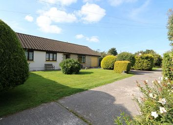 Thumbnail 3 bed detached bungalow for sale in Cross Inn, Llandysul, Ceredigion