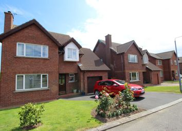 Thumbnail 4 bed detached house for sale in Glenganagh Park, Groomsport, Bangor