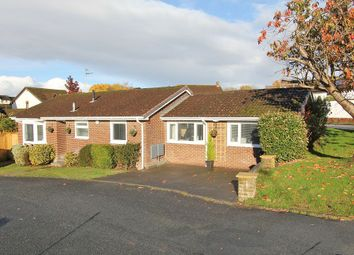 Thumbnail 3 bed detached bungalow for sale in Reynell Road, Ogwell, Newton Abbot