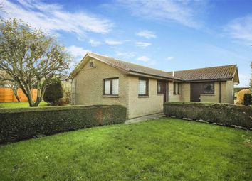 Thumbnail 3 bed bungalow for sale in Woodstead Estate, Embleton, Northumberland