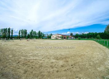 Thumbnail 5 bed equestrian property for sale in Arezzo, Tuscany, Italy