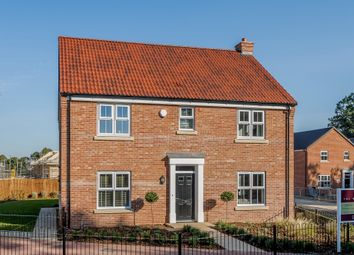 Thumbnail 4 bed detached house for sale in Hospital Road, Little Plumstead, Norwich