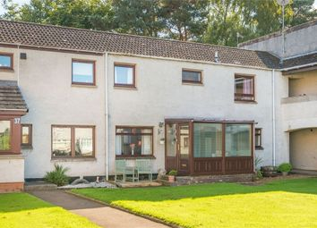 Thumbnail 2 bed semi-detached house for sale in Nursery Park, Brechin, Angus