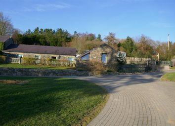 Thumbnail 3 bedroom farm for sale in Porthyrhyd, Llanwrda