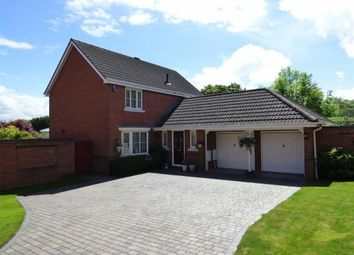 Thumbnail 4 bed detached house for sale in Ashton Close, Daventry