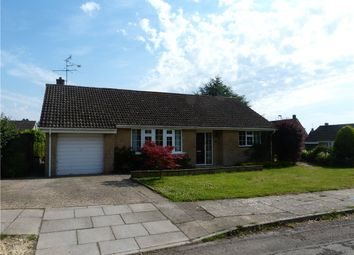 Thumbnail 3 bed detached bungalow to rent in The Sheeplands, Sherborne, Dorset