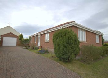 Thumbnail 4 bed detached bungalow for sale in Meadow Grange, Berwick-Upon-Tweed, Northumberland