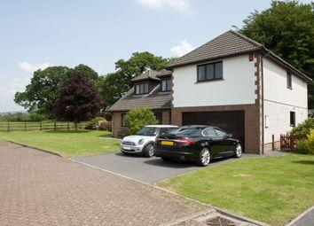 Thumbnail 5 bed property for sale in Golwg Y Twr, Llanarthney, Carmarthen