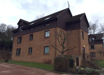 Thumbnail 2 bed flat to rent in Links Road, Lundin Links, Leven