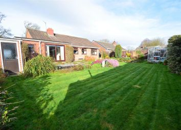 Thumbnail 3 bed bungalow for sale in Merrington Road, Bomere Heath, Shrewsbury