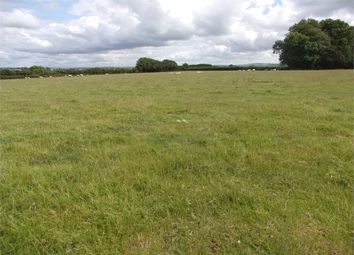 Thumbnail Land for sale in Approx. 33 Acres Accommodation Land, Bryngwrog, Beulah, Newcastle Emlyn