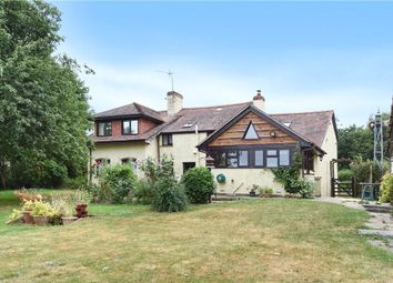 Thumbnail 4 bed detached house for sale in The Warren, Bere Regis, Wareham