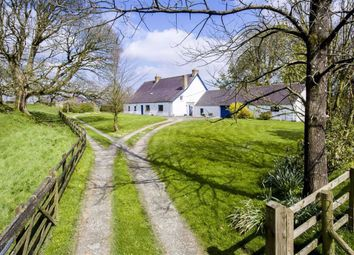 Thumbnail 4 bed detached house for sale in Wiston, Haverfordwest