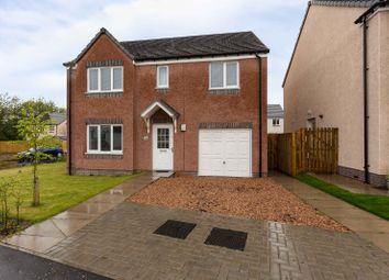 Thumbnail 4 bed property for sale in Kirnie Gardens, Dundee, Angus