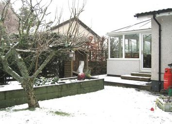 Thumbnail 4 bed detached bungalow to rent in 4 Bedroom Bungalow With Garage, Nethy Bridge