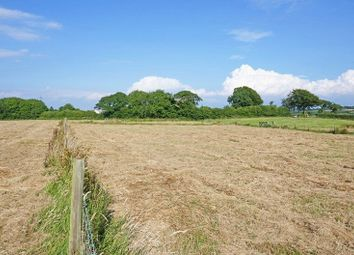 Thumbnail Land for sale in Sutcombe, Holsworthy