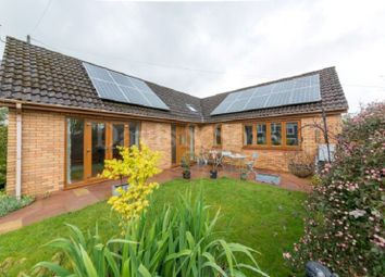 Thumbnail 4 bedroom detached bungalow for sale in Tranch Road, Pontypool, Monmouthshire.