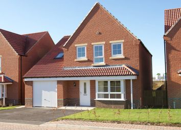 "Thumbnail 4 bed detached house for sale in ""Harrogate"" at Stanley Close, Corby"