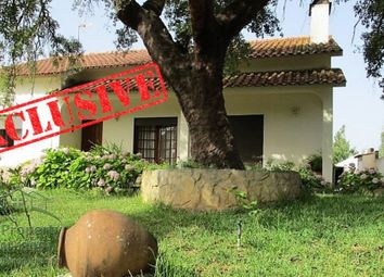 Thumbnail 3 bed property for sale in Tomar, Santarem, Portugal