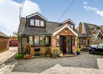 Thumbnail 4 bed bungalow for sale in Dunstable Road, Dagnall, Berkhamsted