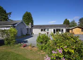 Thumbnail 4 bedroom detached bungalow for sale in Muthill Road, Crieff