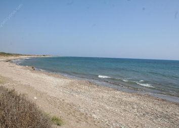 Thumbnail Land for sale in Timi, Paphos, Cyprus