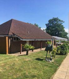 Thumbnail 2 bed detached bungalow for sale in Hogbarn Lane, Harrietsham Kent
