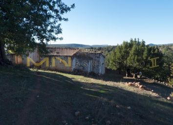 Thumbnail Detached house for sale in Querença Tôr E Benafim, Querença, Tôr E Benafim, Loulé