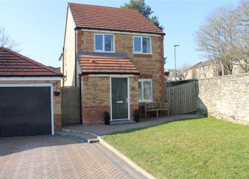 Thumbnail 3 bed detached house for sale in Gibson Close, Haltwhistle