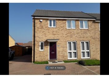 Thumbnail 3 bed semi-detached house to rent in Meerkat Mews, Stanway, Colchester