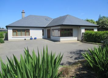 Thumbnail 4 bed detached bungalow for sale in College Road, Clonattin Lower, Gorey, Wexford County, Leinster, Ireland