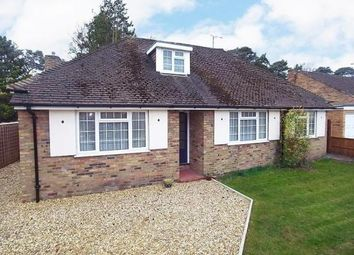 Thumbnail 3 bed detached bungalow to rent in Oriental Road, Ascot, Berkshire