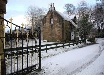 Thumbnail 2 bed detached house to rent in Giffen Lodge, Dalry, North Ayrshire