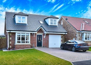 Thumbnail 3 bedroom bungalow for sale in Yeavering Court, Belford, Northumberland