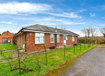 Thumbnail 3 bedroom bungalow to rent in Stoke Road, Stoke D'abernon, Cobham, Surrey