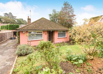Thumbnail 2 bed bungalow to rent in Bredfield Street, Woodbridge