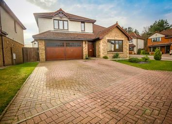Thumbnail 4 bed detached house to rent in Lawson Glade, Adambrae, Livingston