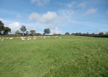 Thumbnail Land for sale in Formerly Part Of Gilfach Goch, Ciliau Aeron, Nr Aberaeron