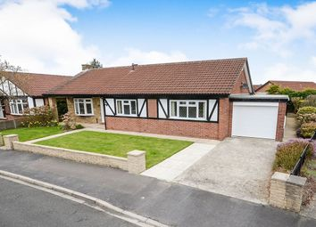 Thumbnail 3 bed bungalow for sale in Langton Court, Strensall, York