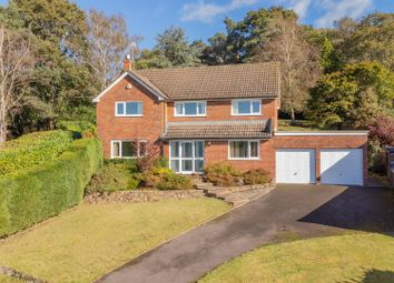 Thumbnail 4 bed detached house for sale in Berrylands, Liss