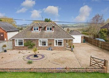 Thumbnail 4 bed detached bungalow for sale in Manor Pound Lane, Brabourne, Kent