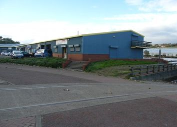 Thumbnail Industrial to let in Norton Road, Blaydon