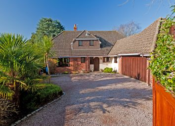Thumbnail 4 bed detached house for sale in West Hill, High Salvington, Worthing
